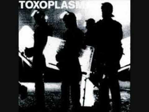 Toxoplasma - Vakuum