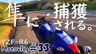 #33【モトブログ・YZF-R6】早朝、隼に捕獲されるツーリング!