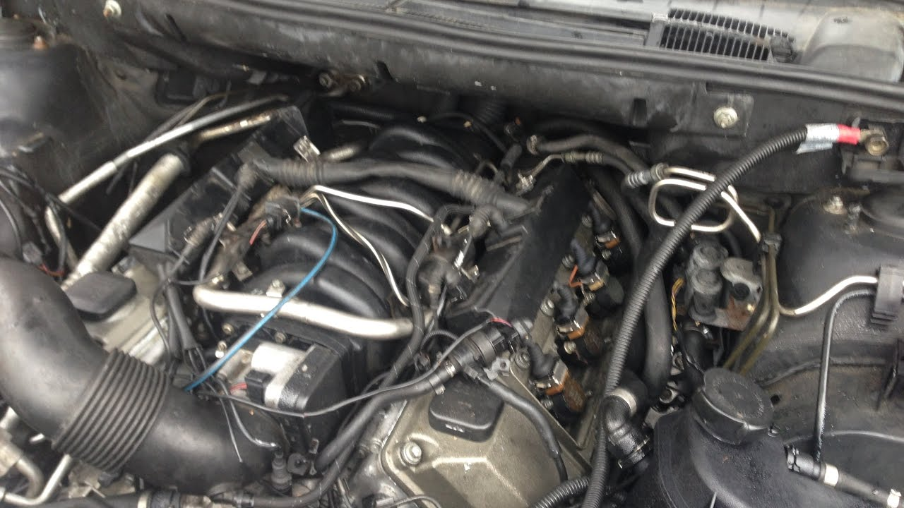 BMW 44L V8 M62 and M62tu Common Antifreeze Coolant Leaks