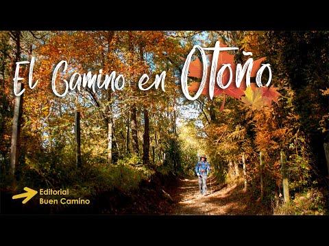 el-camino-de-santiago-en-otoño