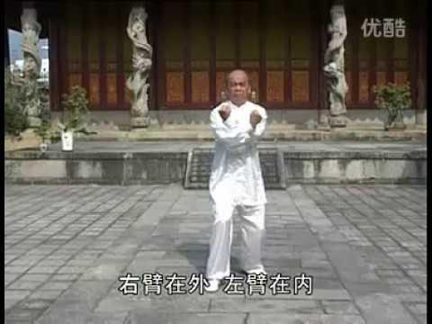 永春白鹤拳 螳螂照日 - 下 Yong Chun white crane - Mantis Faces The Sun B