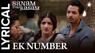Ek Number | Full Song with Lyrics | Sanam Teri Kasam