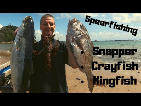 NZ Spearfishing's Big Three From A Kayak!