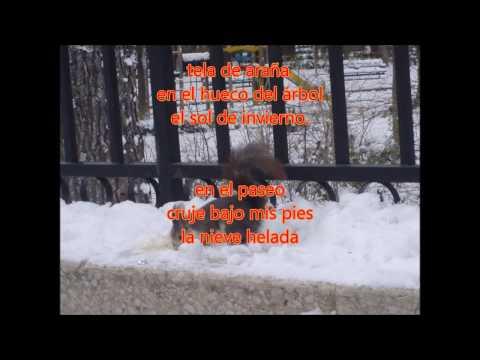 Haikus del Parque II - Selección de haiku de AGHA