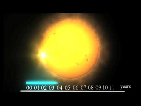 Seasons of the Sun: The Solar Cycle