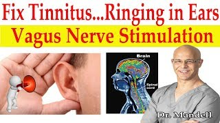 Fix Tinnitus (Ringing in Ears) Major Breakthrough How to Stimulate Vagus Nerve - Dr Alan Mandell, DC