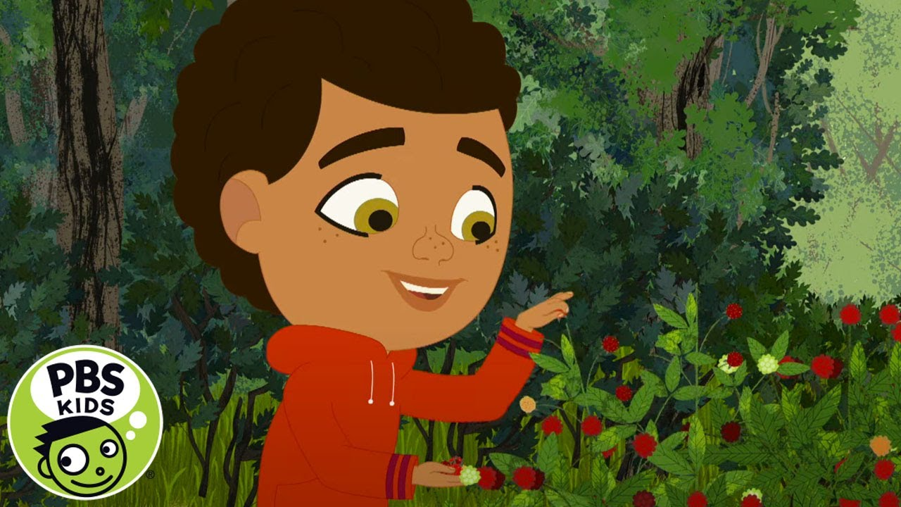 Through the Woods | Berries and Brambles | PBS KIDS