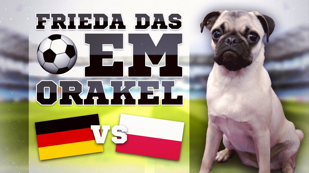 Deutschland Gegen Polen Tipp
