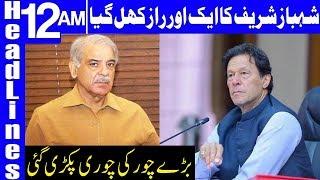 PM Imran Khan takes a Big Action Against Shehbaz Sharif | Headlines 12 AM |15 July 2019 | Dunya News