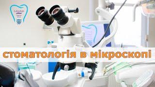 Стоматология в микроскопе