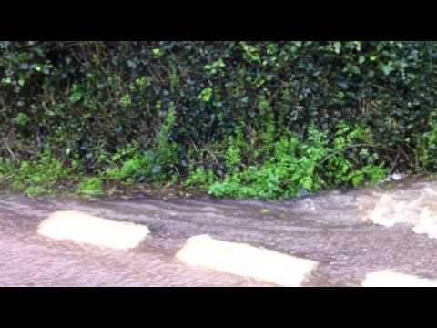 Lympstone Flooding February 2014