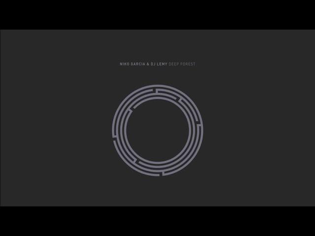 Culpable explosión Cercanamente  Niko Garcia & Dj Lemy - Colors (Original Mix) - YouTube