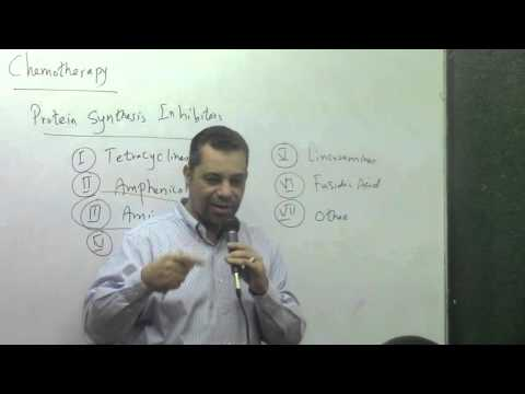 63. Dr Ahmed abdelrahman [ Aminoglycosides - Macrolide antibiotics till their adverse effects ]