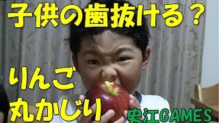 幼稚園児のりんご丸かじりしてる動画です。 リクエストありましたら、コ...