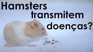Transmissão de doenças através de hamsters