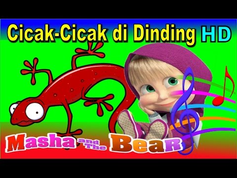 Cicak Cicak di Dinding ✰ Masha & The Bear ✰ Lagu Anak Indonesia Populer