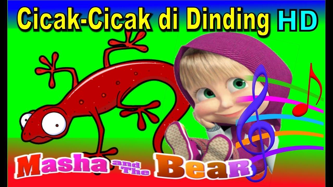 Cicak Cicak Di Dinding Masha The Bear Lagu Anak Indonesia