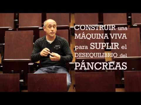 regular-la-glucemia-fuera-del-páncreas---javier-macía