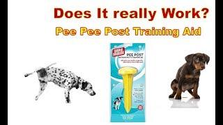 Dog Pee Pee Post Training Aid