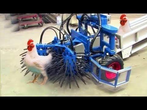 Amazing Engineering WorldWide Intelligent Technology Smart Farming Automatic Chicken Turkey Catcher
