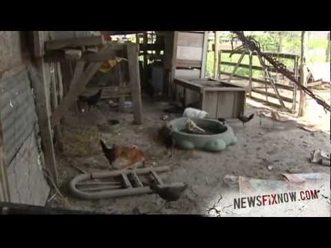 Warning: Graphic video of animal cruelty on a wool farm in Argentina from YouTube · Duration:  1 minutes 47 seconds