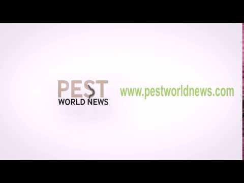 Pest World News VIDEO 13