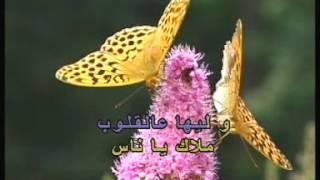 Arabic Karaoke: Georges Wassouf Alb El 3ache2 Dalilou
