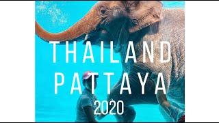 Таиланд Паттайя 2020 Трансвеститы и проститутки Отдых на островах Что поесть Что посмотреть