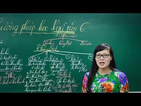 Ngữ Văn Lớp 6 –Bài Giảng Phương Pháp Học Ngữ Văn 6|Cô Lê Hạnh