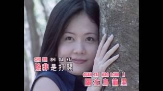 王芷蕾 - 我是一只画眉鸟