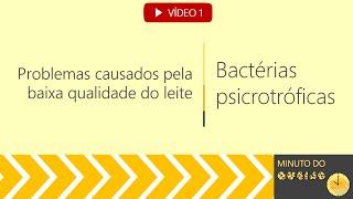 Minuto do queijo - Bactérias psicrotróficas