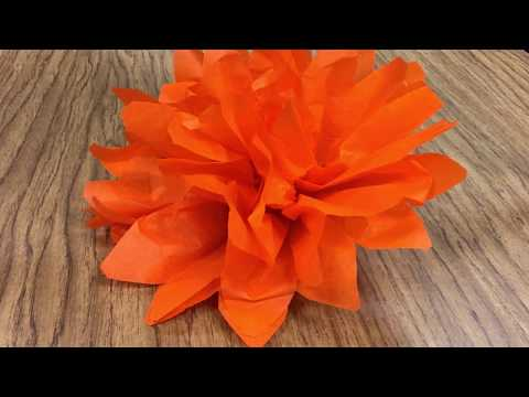 How to Make Tissue Paper Flowers for Day of the Dead