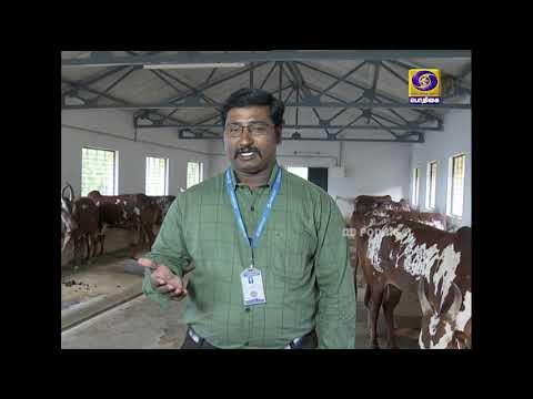 PON VILAIYUM BHOOMI | வேளாண் தொழில் நுட்பம் | 01 - 07 - 2020