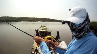 Kayak Fishing Simpson's Creek, Jacksonville FL