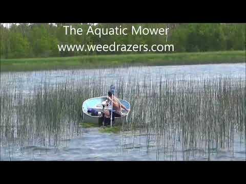 Aquatic Mower Cutting Lake And Pond Bulrush