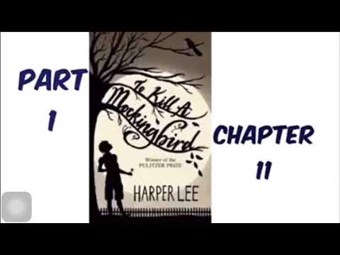 To Kill A Mockingbird By Harper Lee Part 1 Chapter 11 Audiobook Read Aloud