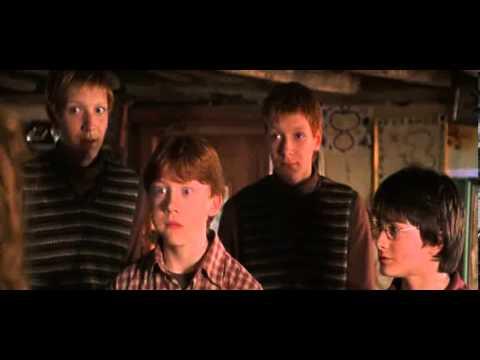 Гарри Поттер - Тайная комната - Дом Уизли