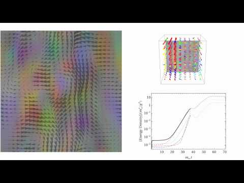 Quark-gluon plasma instability (2D slice + 3D view)