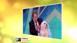 EL VIDEO MAS VIRAL DE YOUTUBE