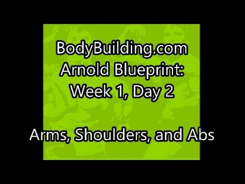 Arnold blueprint week 1 day 2 arms shoulders forearms and abs arnold blueprint week 1 day 2 arms shoulders forearms and abs malvernweather Choice Image