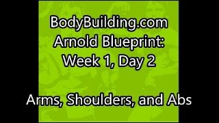 Arnolds blueprint cut day 3 arms clip arnold blueprint week 1 day 2 arms shoulders forearms and abs malvernweather Image collections