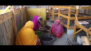 Building Livelihoods In Mogadishu long