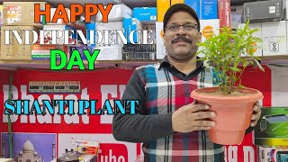 BHARAT KING HAPPY INDEPENDENCE DAY 26 JANUARY AND GROW SHANTI PLANT ☘️