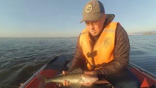 Рыбалка с лодки. Ловим судака на джиг. Осень 2019