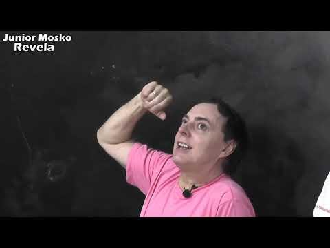 Cheflera E Mania Di Viagem | Junior Mosko Revela