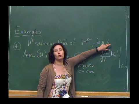 Mini-Course 2: Geometric Flows - CLASS 1