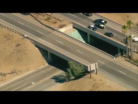 The most daring pursuit in Los Angeles police tackle suspect before jumping from freeway overpass.