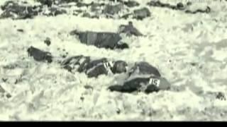 Cazadores de Nazis  Peiper  El Asesino de Malmedy youtube original