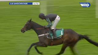 Altior Wins Again: bet365 Celebration Chase at Sandown