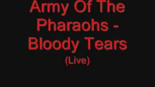 Army Of The Pharaohs - Bloody Tears (Live)